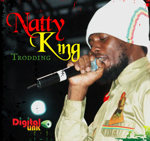 Trodding - Natty King